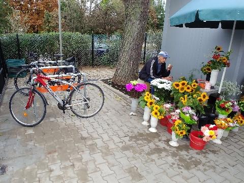 Radom, zieleniak Feniks, rowerem na zkupy