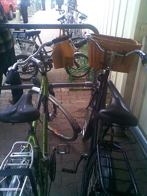 Stokrotka w Radomiu, rowerem na zakupy
