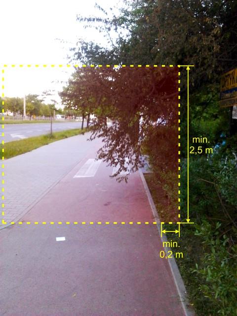 Niezbędna skrajnia dla drogi rowerowej - Radom, Grzecznarowskiego