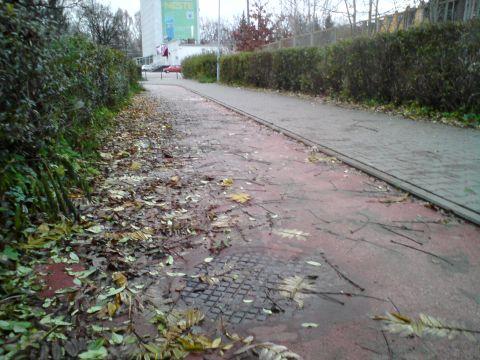 Radom. Al. Grzecznarowskiego, zabrudzona droga rowerowa