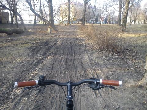 Radom. Wiosna w parku Stary Ogród