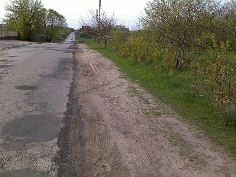 Radom. Zarośnięta ulica Zielona